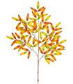 造花・観葉植物クリスプレイ(90)