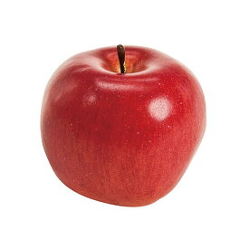 ハニーアップル RED 造花 実もの 果物 野菜 パン アップル [T-FV001715] 代引決済不可
