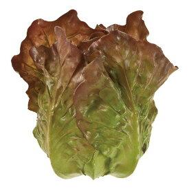サニーレタス GRBR 造花 実もの 果物 野菜 パン 野菜その他 [T-FV001804] 代引決済不可