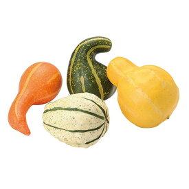 ひょうたんカボチャアソート ASSORT 造花 実もの 果物 野菜 パン かぼちゃ パンプキン [T-FV003670] 代引決済不可