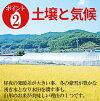山形縣工業 haenuki 水稻 30 公斤 27 生產同一天航運中特別的一個美國總理美國禮物直接從農場向 girazu 商店品牌美國東北部
