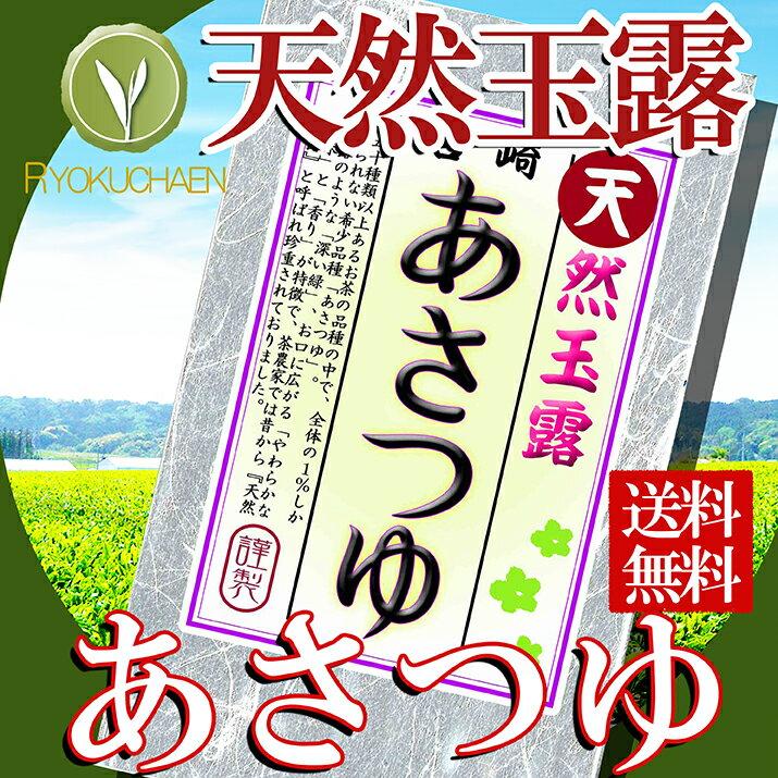 ワンコイン 送料無料 煎茶 宮崎県産 あさつゆ 25gお試し 煎茶 500円シリーズ にもオススメ 詰め合わせにもオススメです