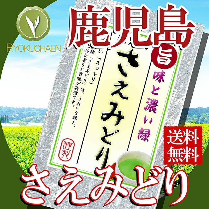 ワンコイン 送料無料 煎茶 鹿児島県産 さえみどり 25gお試し 煎茶 500円シリーズ にもオススメ 詰め合わせにもオススメです