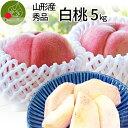山形県産 白桃 5kg(約18玉前後)産地直送の桃 お供え あかつき 川中島白桃 贈答用の桃 美味しい桃 【同梱不可】敬老…