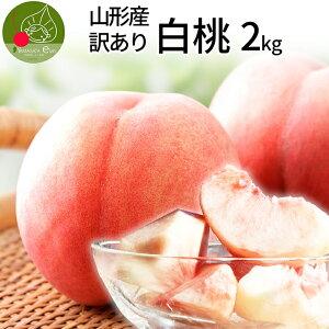【2020年8月下旬発送・先行予約】 訳あり 山形 白桃 2kg(6〜10玉前後)!ちょっと訳ありの桃 固い桃 や 柔らかい桃 を時期に応じてお届け 山形の美味しい桃 硬い桃 【同梱不可】【品