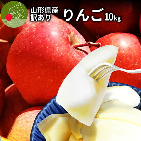 \只今お届け中/ りんご 訳あり 10kg 送料無料 サンふじ 山形県産 産地直送りんご お徳用 ジャムにもOKなりんご りんごジュースにもOK! 家庭用りんご 日時指定不可 食べ物 果物 ポイント消化 美味しいリンゴ あす楽