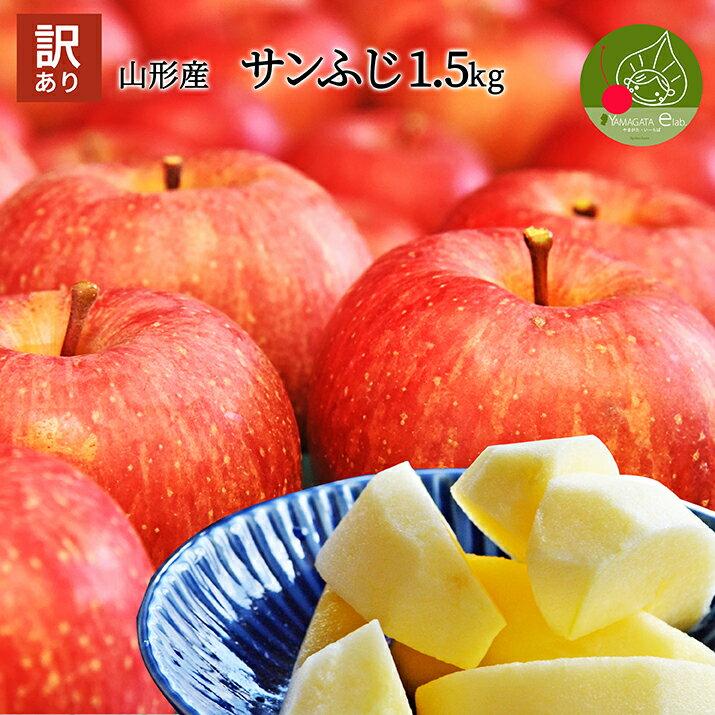 りんご 訳あり 約1.5kg サンふじ 山形県産 産地直送りんご お徳用りんご サンふじ 林檎 ジャムにもOKなりんご りんごジュースにもOK! 家庭用りんご! フルーツ お手軽 健康 食べ物 果物 アップル お年賀 パーティー