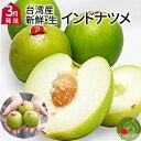 高級 生インドナツメ 1kg 送料無料 約8玉前後 台湾直輸入 新鮮 フルーツ 取り寄せ ギフト 棗 希少品 台湾アップル お…