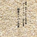 国産スーパー大麦 900g ビューファイバー 100% 愛知県産 高β-グルカン大麦品種【 ネコポス 送料無料 】β-グルカン値…