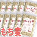 もち麦 500g×10袋入 ケース便利なチャック付きパッケージ!大麦 丸麦 麦ごはん 麦ご飯 もち麦 スーパーフード