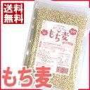 もち麦 500g【メール便・送料無料】大麦 丸麦 麦ごはん 麦ご飯 もち麦 スーパーフード
