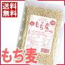 もち麦 500g【メール便・送料無料】大麦 丸麦 麦ごはん 麦ご飯 も...