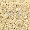 【 地域限定送料無料 】 国産 スーパーもち麦 1カ月分お試しセット 350g×4袋入り【 高 β-グルカン もち性大麦品種 …