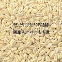 国産スーパーもち麦 900g ワキシーファイバー 100%  愛知県産 高...