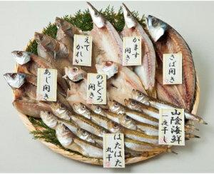 送料無料 産地直送品 山陰海鮮一夜干し のどくろ はたはた あじの開き えてかれい かます開き さばの開き 一夜干しセット 魚 日本海 海の恵み 代引き不可