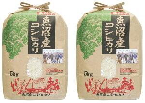 令和2年産 新潟県魚沼産コシヒカリ 10kg(5kg×2) お米 ご飯 白米 ライス おにぎり 新潟米
