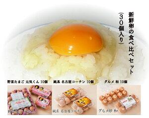 農場直送 新鮮卵の食べ比べセット(30個入り) 純系 名古屋コーチン グルメ卵 和(なごみ)元気くん 愛知県産 卵かけごはんTKG 卵黄 花井養鶏場 送料無料