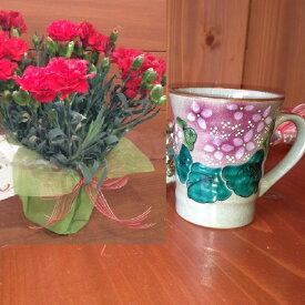 母の日 ギフト セット… カーネーション の 鉢植え & 九谷焼 マグカップ *あじさい(ピンク)