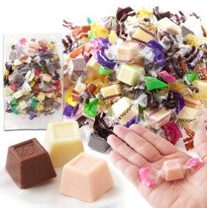 いろんな味が楽しめる!!【お徳用】ジャージーミックスひとくちチョコレート300g