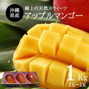 【送料無料】沖縄産アップルマンゴー1kg (2玉〜3玉)贈答用 ギフト