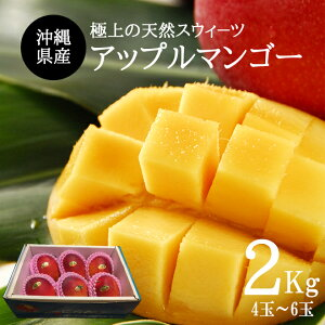 【送料無料】【お中元】沖縄産アップルマンゴー2kg(4玉〜6玉)贈答用 ギフト