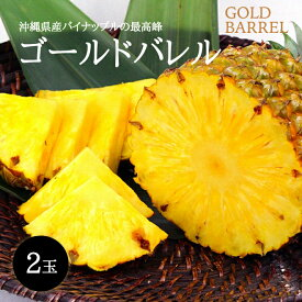 【送料無料】沖縄産ゴールドバレル2玉(1玉1.0〜1.5kg)国内ブランド最高峰無添加 沖縄フルーツ
