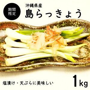 【送料無料・即発送可】沖縄県産 島らっきょう1kg(土付き)食べ方説明書付き国産 ラッキョウ らっきょう