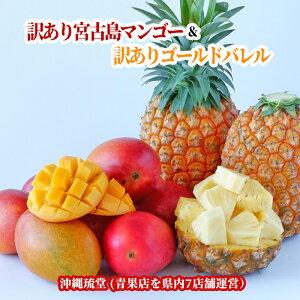 【訳あり】宮古島アップルマンゴー&【訳あり】ゴールドバレル食べ比べセット 1玉(300g以上)&1玉(1kg以上)【送料無料・即発送可】