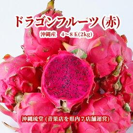 【送料無料・即発送可】沖縄県産ドラゴンフルーツ(赤) 2kg(4~8玉)レッドピタヤ 食物繊維が豊富 無添加 沖縄 フルーツ