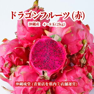 【送料無料・即発送可】沖縄県産ドラゴンフルーツ(赤) 2kg(4〜8玉)レッドピタヤ 食物繊維が豊富 無添加 沖縄 フルーツ