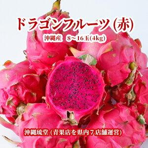 【送料無料・即発送可】沖縄県産ドラゴンフルーツ(赤) 4kg(8〜16玉)レッドピタヤ 食物繊維が豊富 無添加 沖縄 フルーツ
