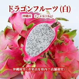 【送料無料・即発送可】沖縄県産ドラゴンフルーツ(白) 1kg(2~4玉)ホワイトピタヤ 食物繊維が豊富 無添加 沖縄 フルーツ
