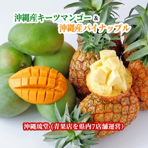 沖縄県産キーツマンゴー(幻のマンゴー)&沖縄県産パイナップル食べ比べセット 2玉(1.2kg以上)&1玉(800g以上)【送料無料・即発送可】