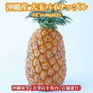 沖縄県産【大玉】パイナップル(パインアップル) 3玉(4.8kg以上)【送料無料・即発送可】