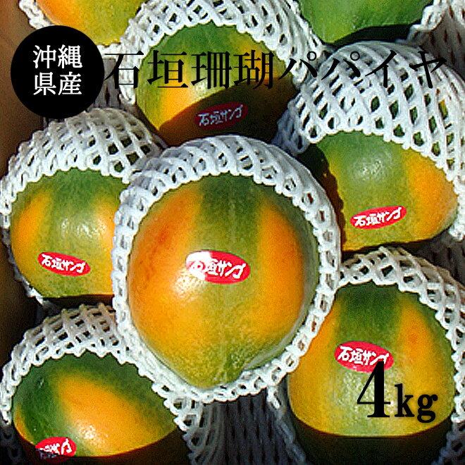 【送料無料】沖縄県産石垣珊瑚パパイヤ4Kg (6玉〜10玉)マンゴーの様に甘い沖縄果実