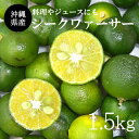 【送料無料】沖縄産青切シークワーサー果実・シークワァサー果実・シークヮサー果実・シークアーサー果実1.5kg(40〜80玉前後)