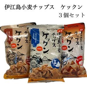 伊江島小麦チップス ケックン 3個セット 塩味 スパイシー 黒糖シナモン味