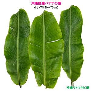 【送料無料】沖縄県産バナナの葉 小サイズ(3枚)