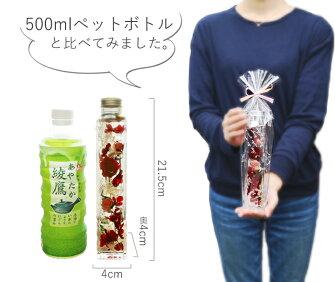 https://image.rakuten.co.jp/s-arrange/cabinet/05727946/05727950/05908719/imgrc0082933974.jpg