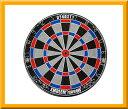 ダーツ【ダーツボード (Dartsboard)】【DYNASTY】 EMBLEM Queen (Type-S) ハードボード ・ グレー