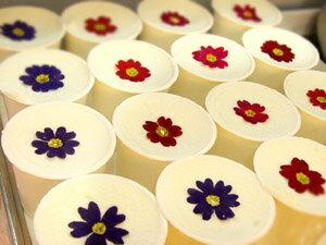 花ジェラートセット6個入【ギフト用発泡箱でのお届け】花ジェラと人気パステルカラーのジェラートを詰め合わせにしました。カーネーション(造花)+メッセージカード付♪