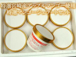 宮崎産アップルマンゴーをふんだんに使ったマンゴーソルベ6個セットご自宅用簡易包装でのお届けです。ギフトでご利用の方は緩衝材入箱代200円追加となります。