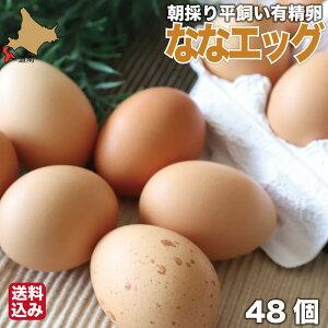 平飼い 有精卵 朝採り 48個 (44個+4個割れ保証) 岡崎おうはん ななエッグ 産地直送 北海道 大沼 株式会社GAC 送料無料