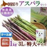 紫アスパラ有機JAS無農薬