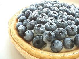 【誕生日ケーキバースデーケーキならこれ!】ブルーベリーニューヨークチーズケーキ