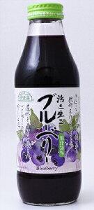 マルカイ 順造選 果汁50%ブルーベリージュース 500ml×12本(1ケース)