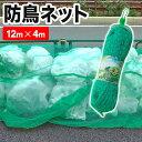 送料無料 ! カラスよけネット 4m×12m 長さカット可能 カラス対策 鳥よけネット【検索: 防獣ネット ゴミネット ごみ捨…