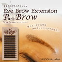 Eye brow extension