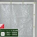 [1000円オフクーポンあり]ビニールカーテン 透明 透明防炎 PVC糸入り 0.35mm厚 【FT06】幅401〜500cm 丈251〜300cm 間…