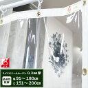 ビニールカーテン 透明 防炎 丈夫なPVCアキレス 0.3mm厚 【FT11】 幅91〜180cm 丈151〜200cm 間仕切 冷暖房効果UP 節…